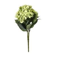 Vitale Yeşil Yaban Gülü Demet AK.BG0156-Y